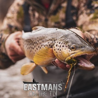 Eastmans' Fly Cast