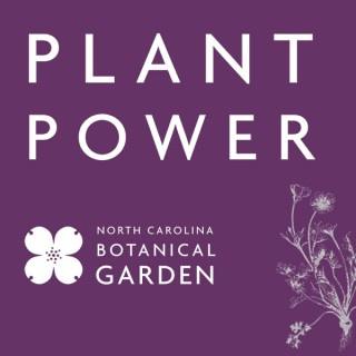 Plant Power: The Power of Plants in a Changing Climate