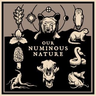Our Numinous Nature