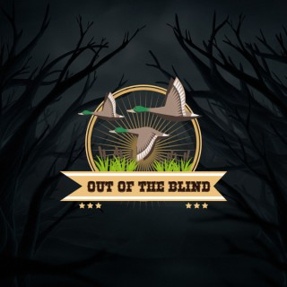 Out Of The Blind