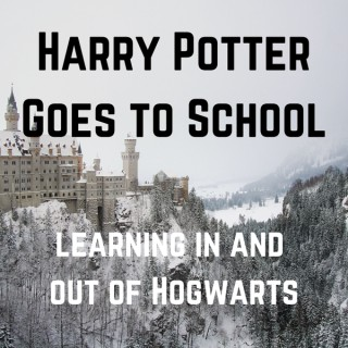 Harry Potter Goes to School