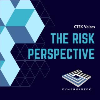 CTEK Voices: The Risk Perspective