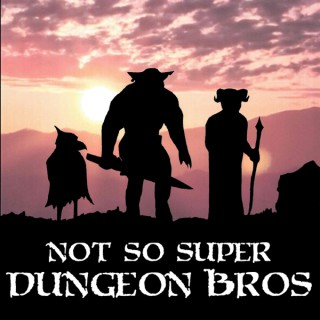 Not So Super Dungeon Bros