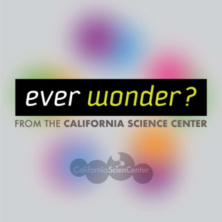 Ever Wonder? from the California Science Center