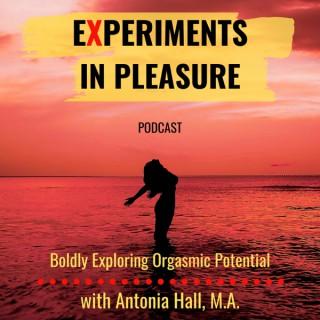 Experiments in Pleasure