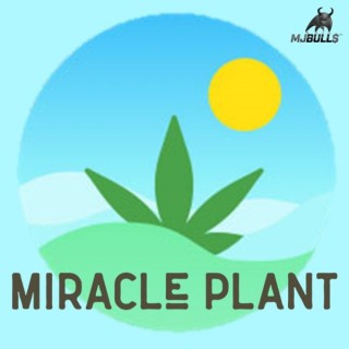 Miracle Plant