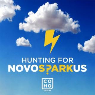 Hunting for Novosparkus
