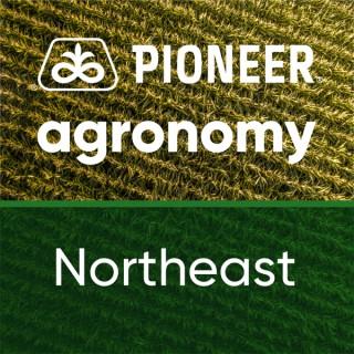 Pioneer Agronomy: Northeast