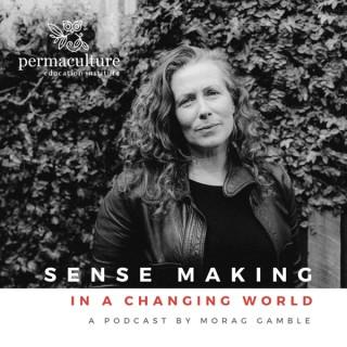 Sense-making in a Changing World