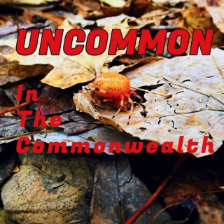Uncommon in the Commonwealth: A Paranormal Podcast