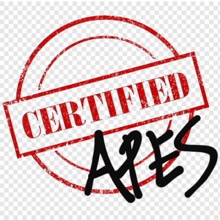 Certified Apes Podcast