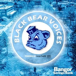 Black Bear Voices