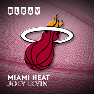 Bleav in Miami Heat