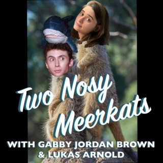 Two Nosy Meerkats