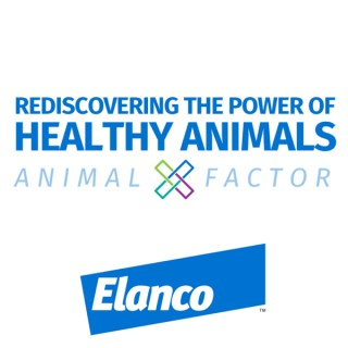 Rediscovering the Power of Healthy Animals - Animal X-Factor