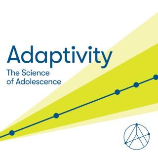 Adaptivity