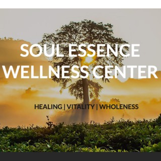 Soul Essence Wellness Center