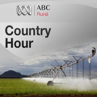 Queensland Country Hour