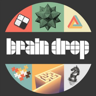 Brain Drop Puzzles