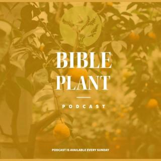 Bible Plant