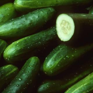 Cucumber Talk