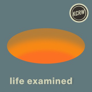 Life Examined