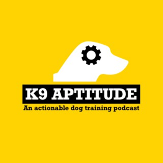 K9 Aptitude
