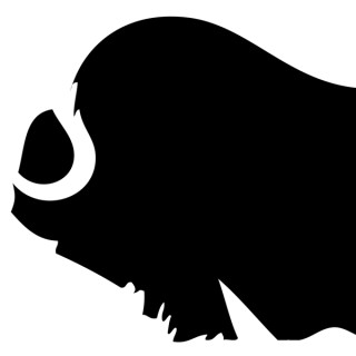 Muskox Records Headspace