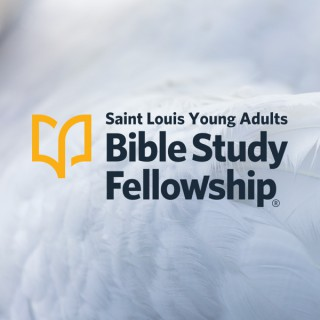St. Louis Young Adults BSF Weekly Bible Teaching