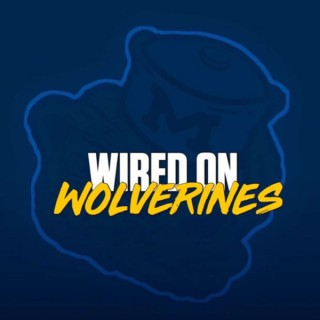 Wired On Wolverines