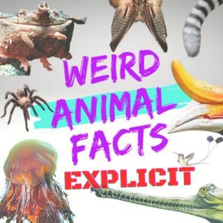 Weird Animal Facts: Explicit