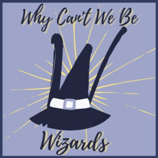 Why Can't We Be Wizards