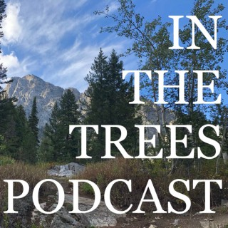 IN THE TREES PODCAST