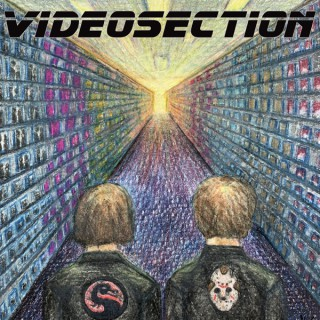 Videosection