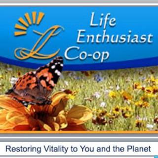 Healthy Diet | Nutrition | Alternative Health | Health Information | Healthy Living | Life Enthusiast