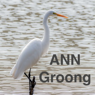 Armenian News Network - Groong: Week In Review Podcast
