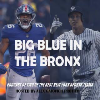 Big Blue In The Bronx