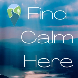 Find Calm Here Podcast