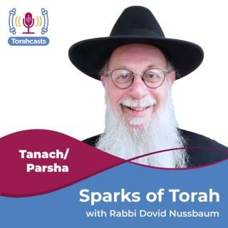 Sparks of Torah