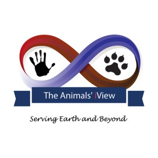 The Animals' iView