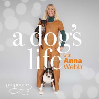 A Dog's Life with Anna Webb