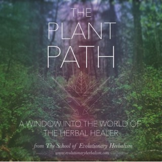 The Plant Path