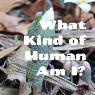 What Kind of Human?
