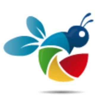 Bee Fly Media