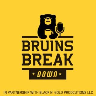 Bruins Breakdown