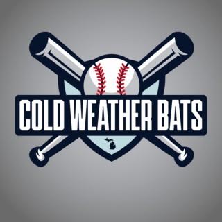 Cold Weather Bats