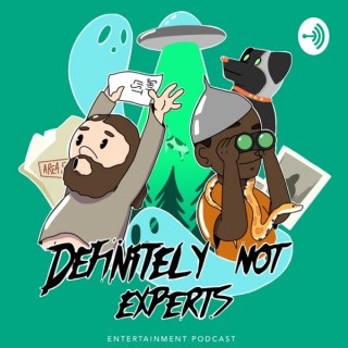 Definitely Not Experts