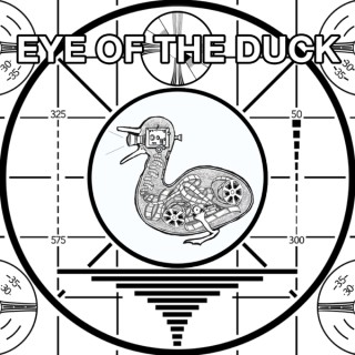 Eye of the Duck