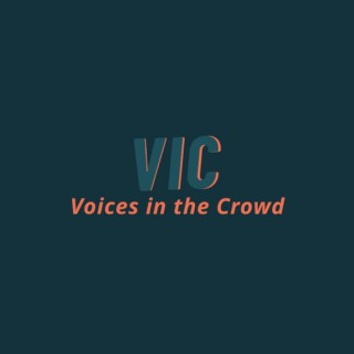 Voices in the Crowd