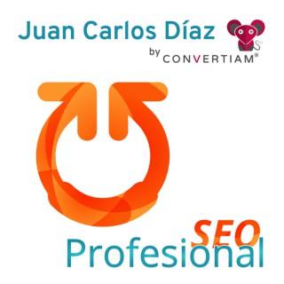 SEO Profesional es un Podcast de SEO| SEM | Analítica | CRO | WPO | Marketing Online & la actualidad de este fantástico sec